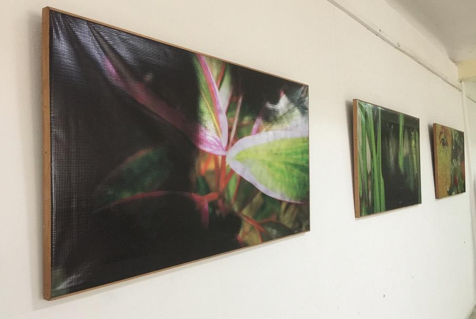 """Exposición """"Honrando"""" del artista de la plástica Nazario Salazar."""